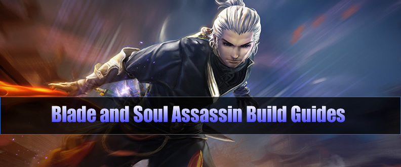 Blade and Soul Assassin Build Guides