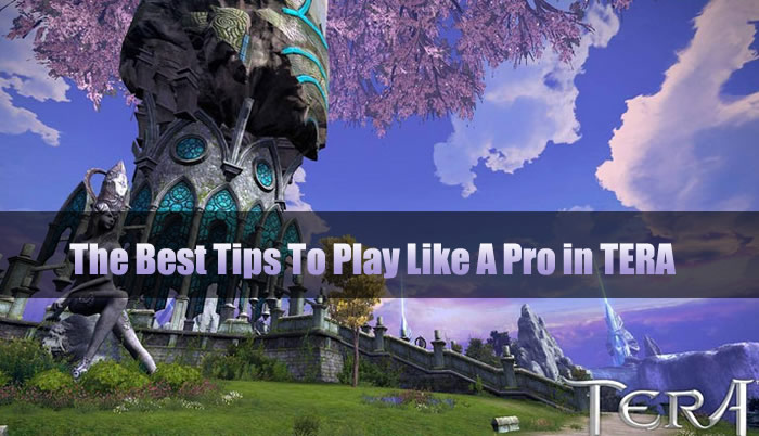The Best Tips To Play Like A Pro in TERA