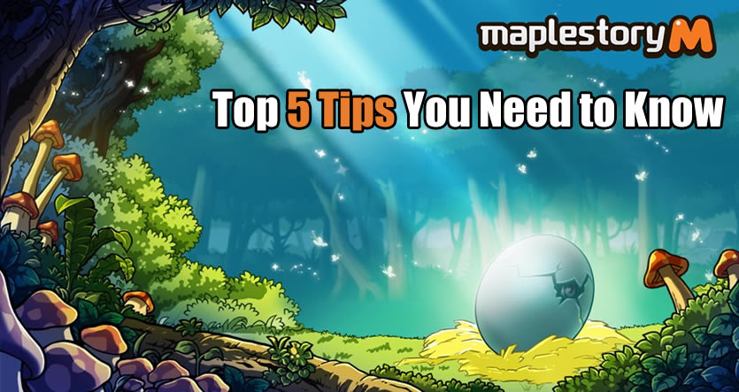 MapleStory M - Top 5 Tips You Need to Know