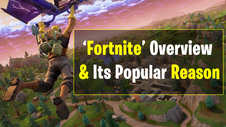 Fortnite Overview and Popular Reason