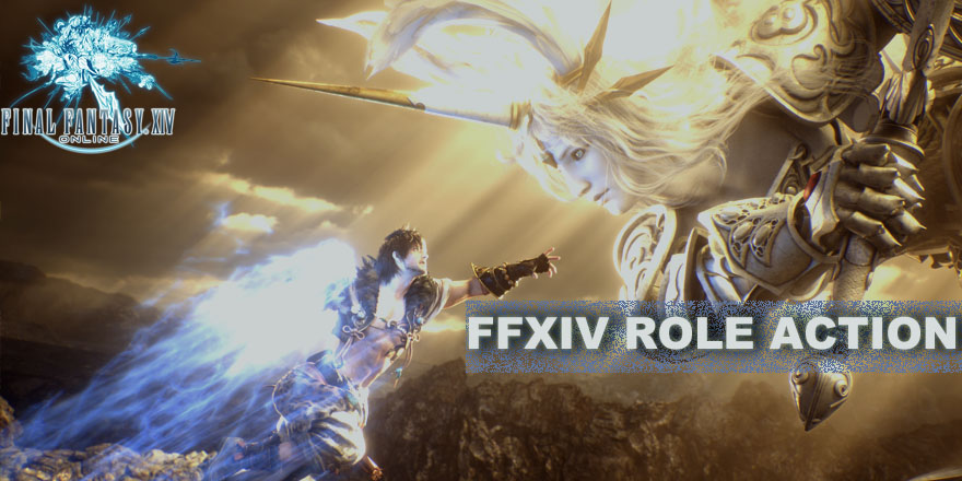 Final Fantasy XIV Basic Information Role Action