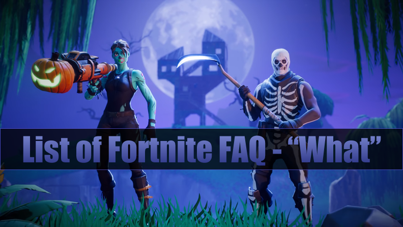 "List of Fortnite FAQ - ""What"""