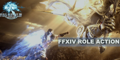 Final Fantasy XIV Basic Information: Role Action In FFXIV
